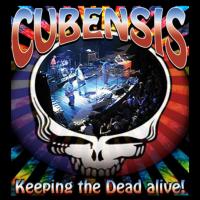Grateful Dead Tribute Band Cubensis